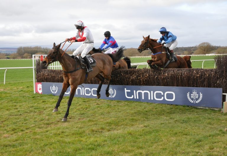 Timico invests in new Gold Cup for amateur point-to-point riders