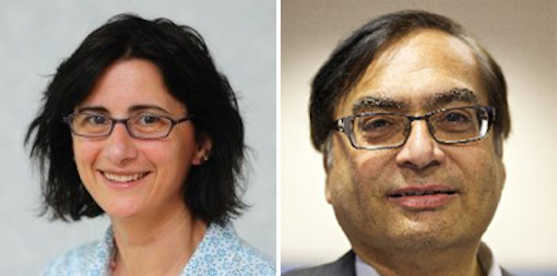 Two new board members for LLEP