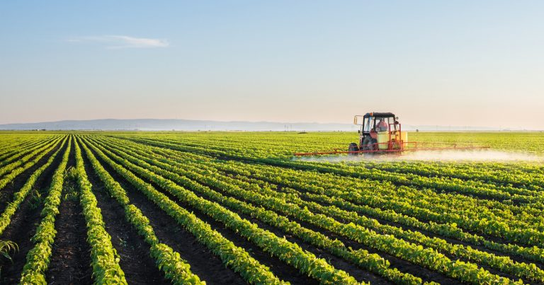 Nottingham research supports farmers as part of new Agriculture bill